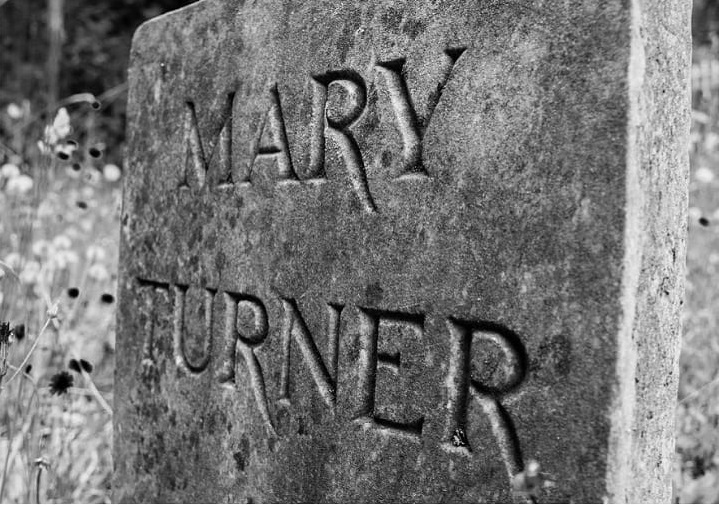 Mary Turner un crime effroyable