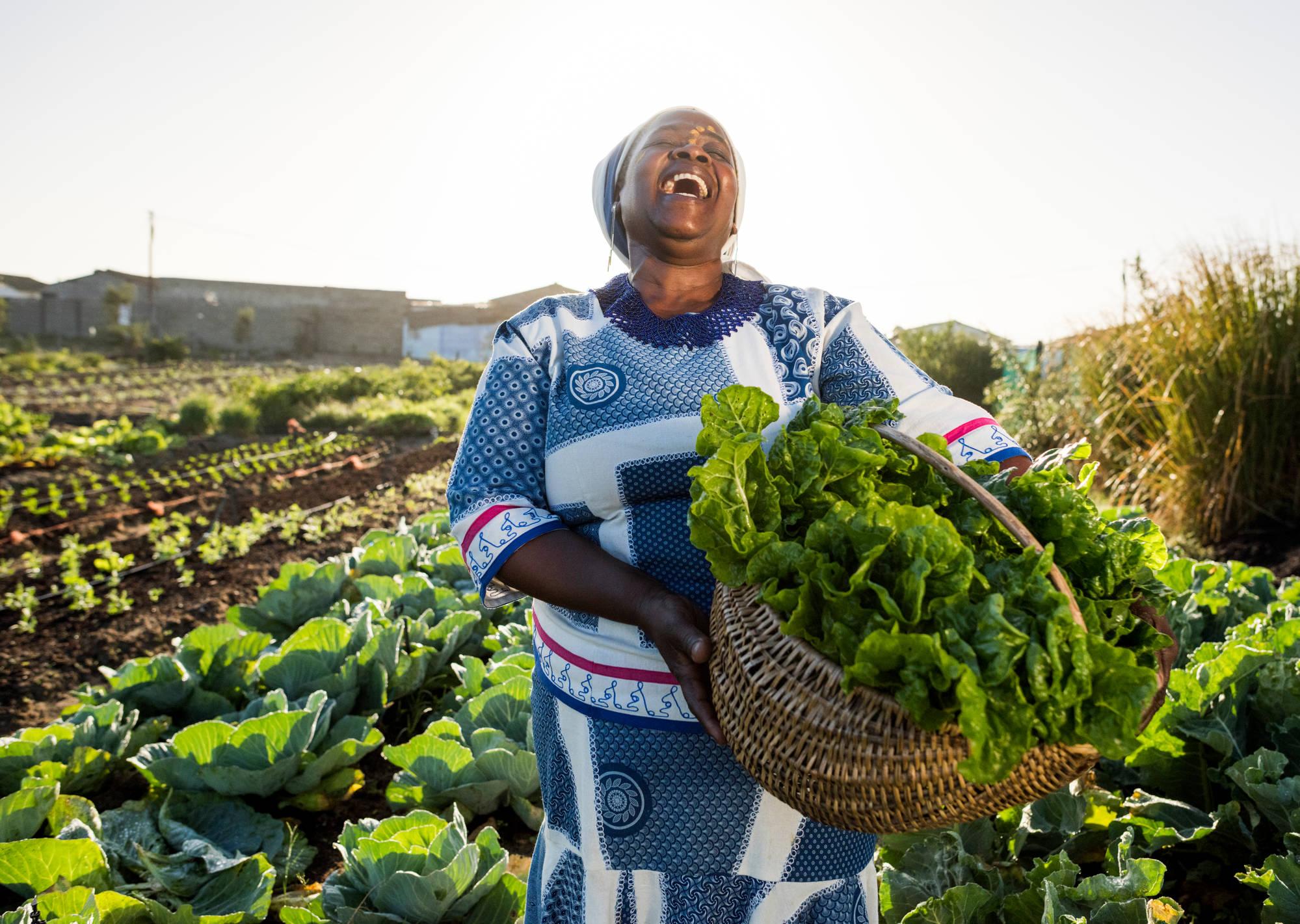 La ferme biologique Cheikh Anta d'Aminata Samb, un projet à soutenir et à valoriser